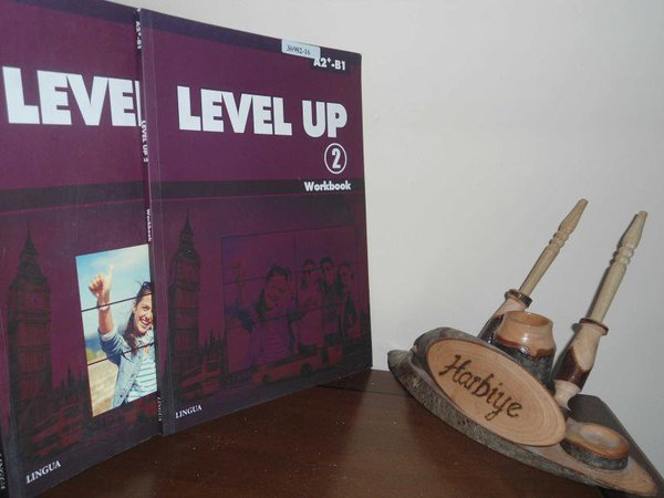 Level Up 2 - Student's Book + Workbook A2+-b1