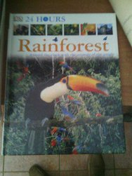 Rainforest A Round The Clock With The Animals